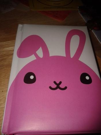 bunny-notebook-writing-challenge